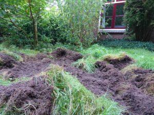 En dan ziet je tuin er dus zo uit
